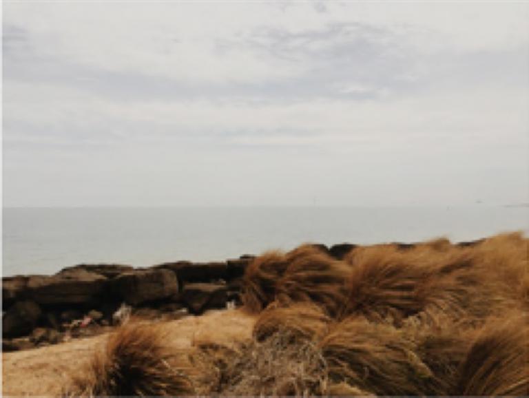 Leonard Grigoryan: The sea, the sky (a)