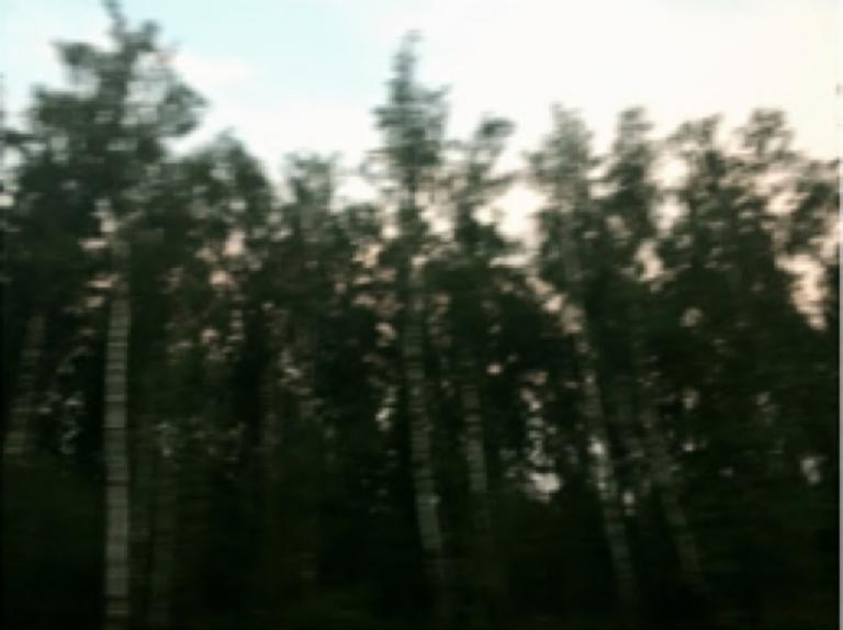 Leonard Grigoryan: Russian birch (a)