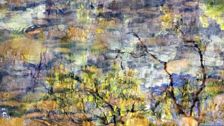 Gary Steer: Broger's Creek Impressions I