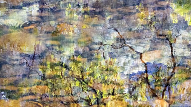 Gary Steer: Broger's Creek Impressions II