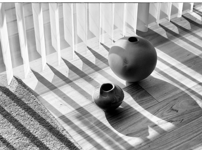 Sue Williamson: Conversation with Light