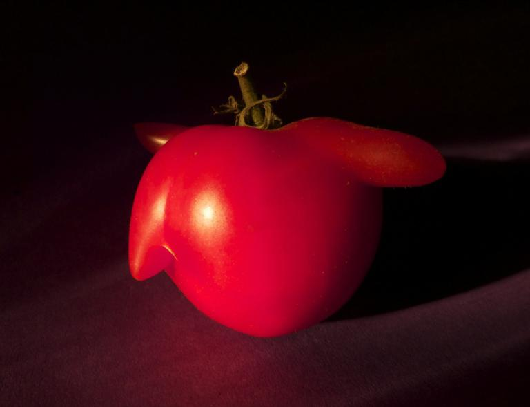 Belinda Webster: Tomato