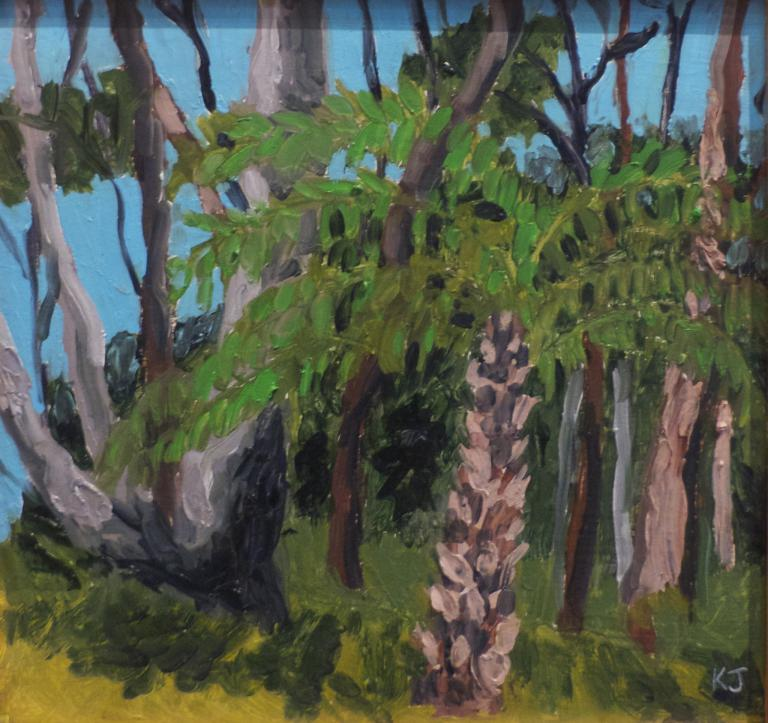 Kaye Johnston: Tree Fern