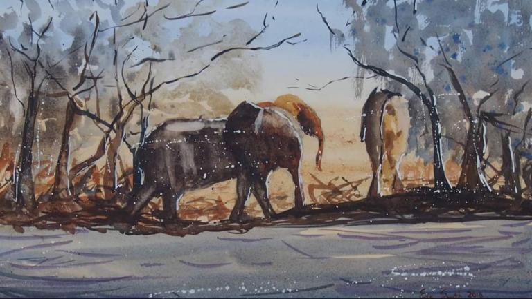 Zambesi Elephants