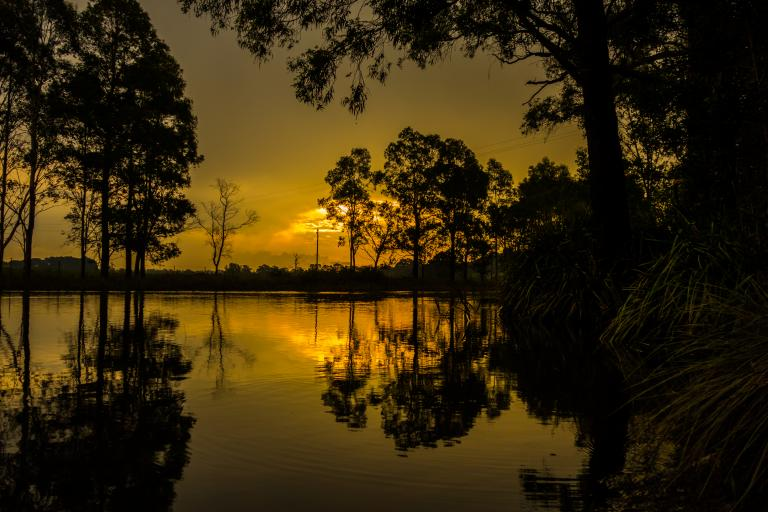 Chris Sutton Wingecarribee River in Flood