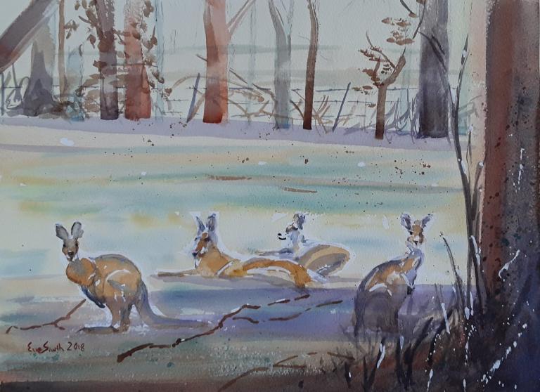Eve Smith: Kangaroo Valley Residents