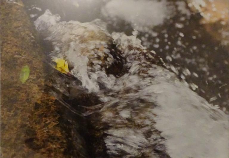 Sue Williamson: Water: A Precious Memory