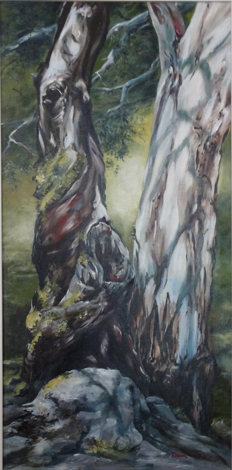 Dawn Daly: Thredbo Trees