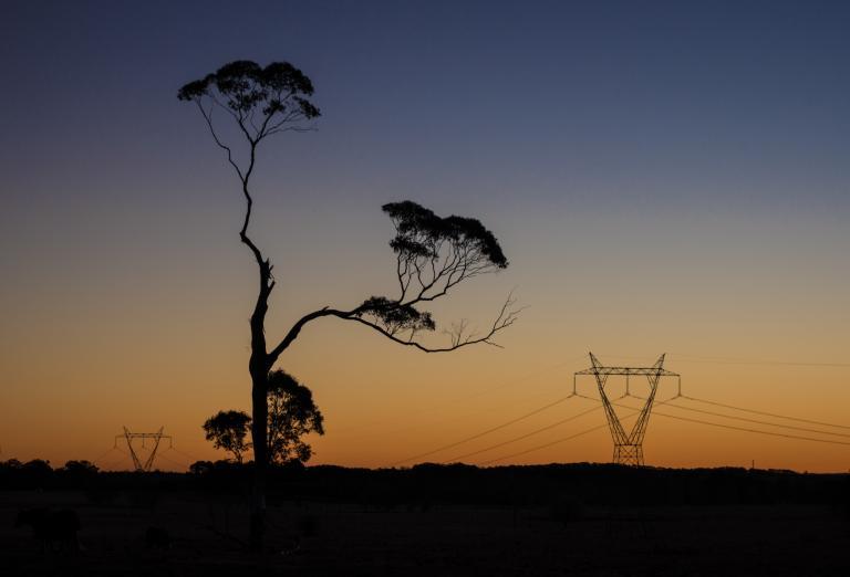 Chris Sutton: Imitation - Exeter Sunset