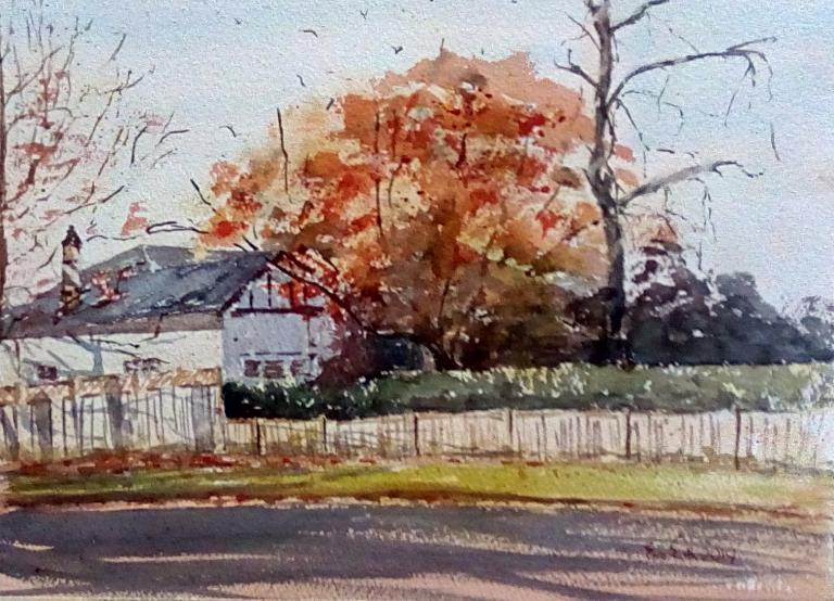 Eve Smith: Autumn in Roseville