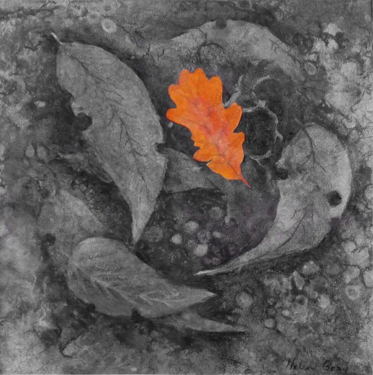 Helen Gray: Forest Floor I