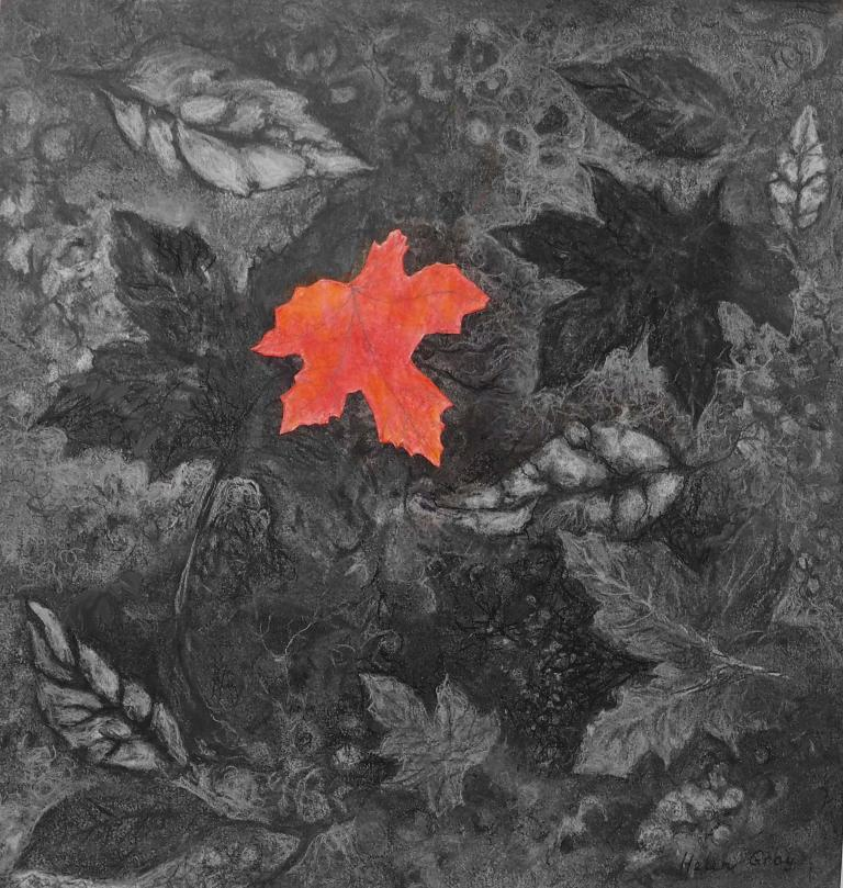 Helen Gray: Forest Floor II