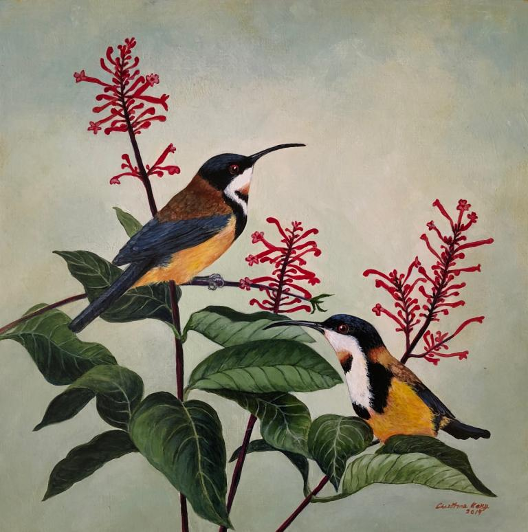 Christine Ann Kelly: Spinebills and Firespikes