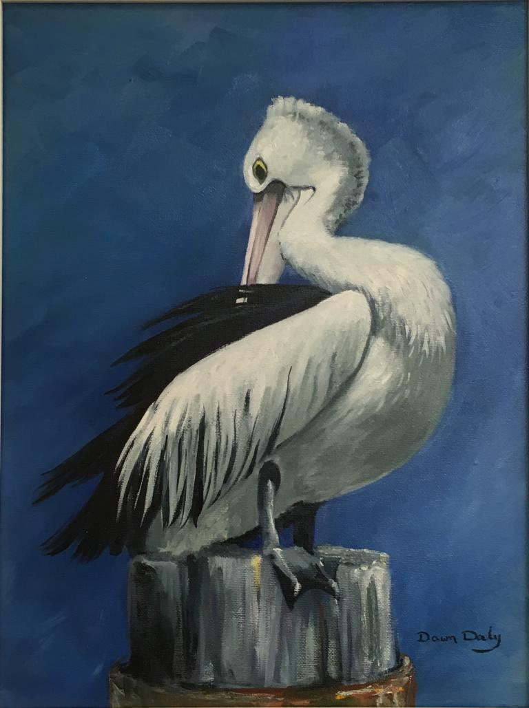 Dawn Daly: Pelican Post