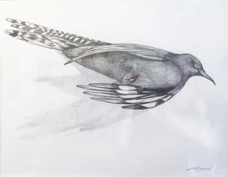 Githa Pilbrow: Cuckoo