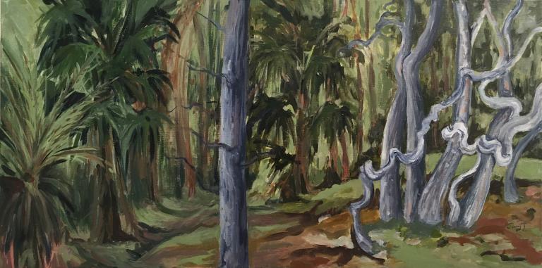 Jenny Thompson: My Rain Forest