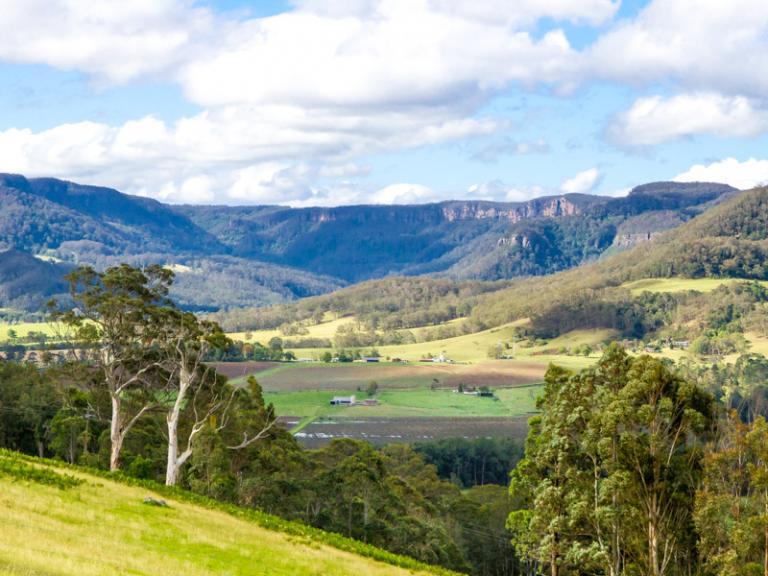 Sue Williamson: : Kangaroo Valley from Jarretts Lane