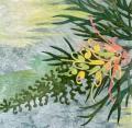 Carolyn Collins: Peaches and Cream – Grevillia 3
