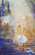 Mogo Geese